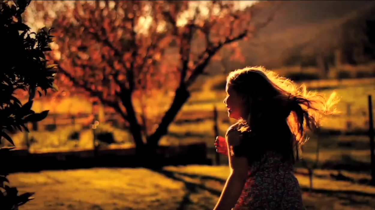 Video: The Temper Trap - Miracle